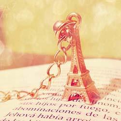 قالب وبلاگ پاریس (گلبهی)
